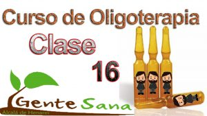 Clase 16