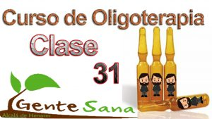 Clase 31